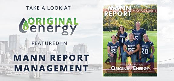 original-energy-banner